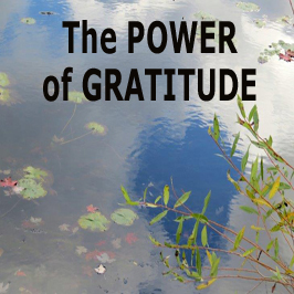 the power of gratitude footer 266x266